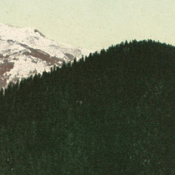 Postcard Print of Mt. Hood image detail