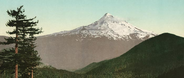 Postcard Print of Mt. Hood wide thumbnail image