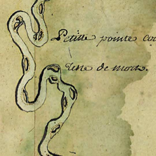 Demarigny's Map of the Mississsippi Delta showing Rivers and Roads (1743) image detail