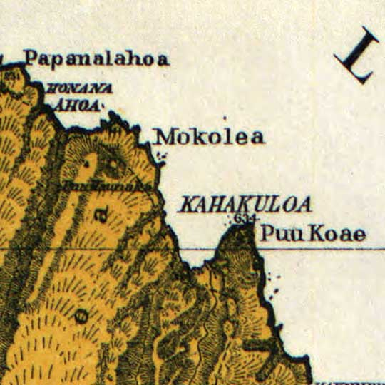 Maui, Hawaii in 1885 image detail