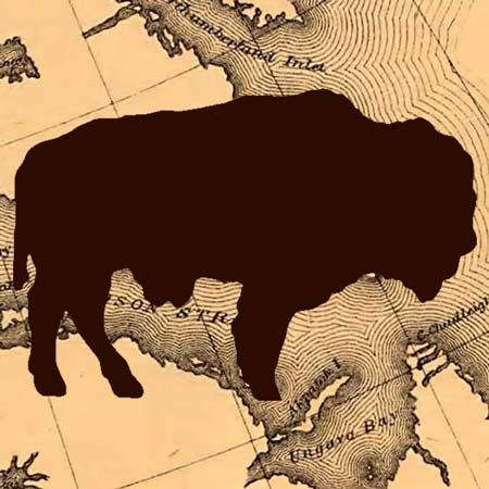 The Extermination of the American Bison (1889) image detail