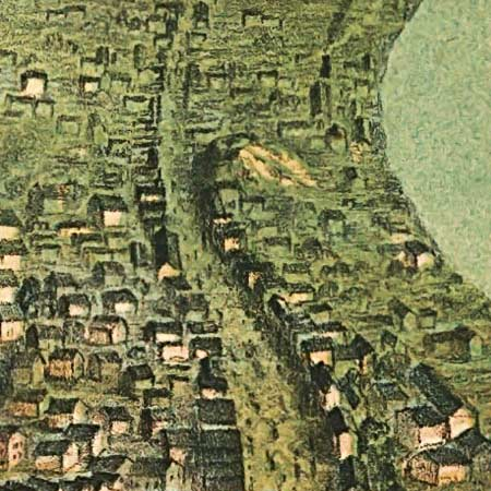 Janicke's map of St Louis (1859) image detail