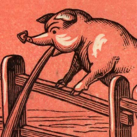 U.S. States given porcine nicknames (1884) image detail