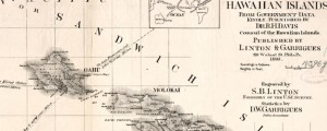 Topographical map of the Hawaiian Islands Davis' Topographical map of the Hawaiian Islands (1893) Date: 1893 Author: R H Davis Dwnld: Full Size (13.05mb) Source: Library of Congress Print Availability: See our Prints Page for more details pff This map isn't part of any series, but we have other maps of Hawaii that you might want to check out. Late-19th Century Topographic map of the Hawaiian Islands. For more map...